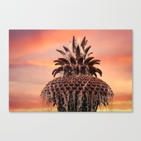 Pineapple Fountain Pink Canvas Print by Legends Of Darkness Photography
