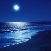 Full Moon Over the Sea Photographic Print at Art.com