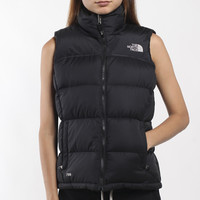 Vintage North Face Vest