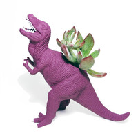 Up-cycled Mulberry T-Rex Dinosaur Planter - With Succulent Plant