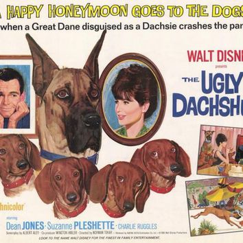 The Ugly Dachshund 11x14 Movie Poster (1966)