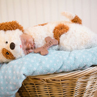 Cuddly Pupply Infant Bunting Costume