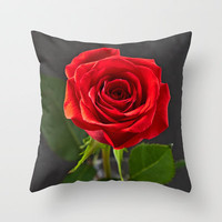 Red Rose in a small Vase Throw Pillow by Karl Wilson Photography