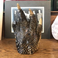 Large Alligator Foot