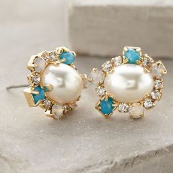 Pearled Charlotte Posts by Anthropologie Pearl One Size Earrings