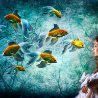 Title: Ocean Deep Dreaming.  Goldfish swimming in around seaweed next to a girl.