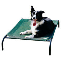 Coolaroo Elevated Indoor/Outdoor Pet Cot