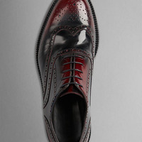 Leather Wingtip Brogues With Rubber Sole