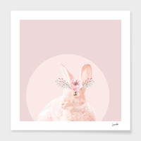 «biar rabbit» Art Print by Suzanne Carter - Numbered Edition from $24.9   Curioos