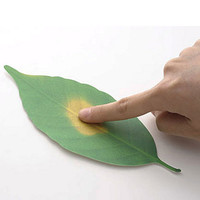 Leaf Thermometer by Hideyuki Kumagai for +d - Free Shipping