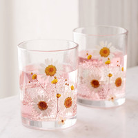 Pressed Daisy Glasses Set | Urban Outfitters
