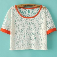 Classic Crochet Lace Cropped Tee - OASAP.com