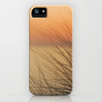 sea urchins iPhone & iPod Case by Guido Montañés