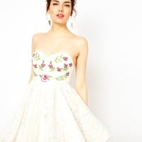 Ginger Fizz Lace Dress with Embroidery