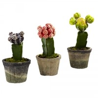 Indoor Silk Colorful Cactus (Set of 3): Potted