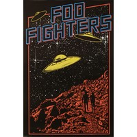 Foo Fighters Domestic Poster