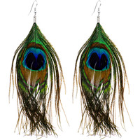 Peacock Times Feather Earrings | Body Candy Body Jewelry