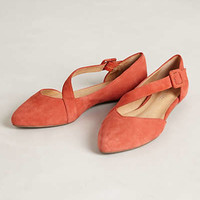 Luca Suede Flats by Klub Nico Sapphire 7 Flats