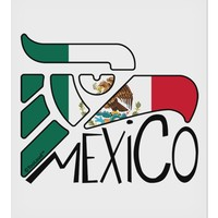 "Mexico Eagle Symbol - Mexican Flag - Mexico 9 x 10.5"" Rectangular Static Wall Cling by TooLoud"