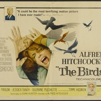 THE BIRDS MOVIE POSTER Alfred Hitchcock RARE VINTAGE 2