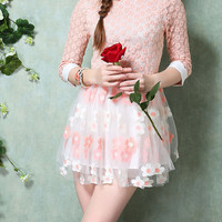 Peter Pan Collar Embroidered Mesh and Lace Mini Dress