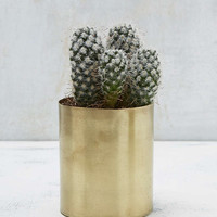 Mod Metal Small Pot - Urban Outfitters