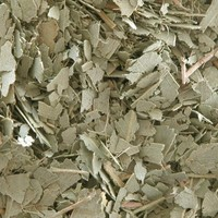Eucalyptus Leaf . Herbal Alchemy . One Ounce . For Protection, Banishing, Well Being, Cleansing