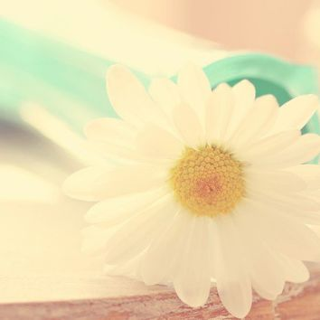 daisy, photo, aqua, yellow, soft, summer, pastels, robins egg blue, dusty pink, beige, shabby chic, cottage, farmhouse, home decor
