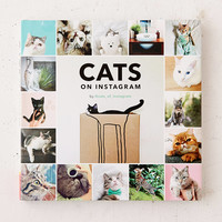 Cats On Instagram By @cats_of_instagram   Urban Outfitters