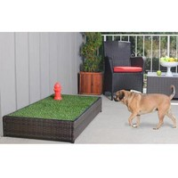 Porch Potty | Pet Products | SkyMall