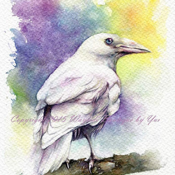 """PRINT – Silver Raven Watercolor painting 7.5 x 11"""""""