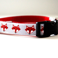 Fox Dog Collar Adjustable Sizes (XS, S, M)