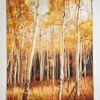 Rustic Get in on the Aspen Tapestry by ModCloth