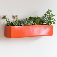 ModCloth Urban Grow with Your Instincts Wall Planter