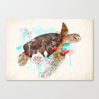 Tortuga Stretched Canvas by Ariana Perez