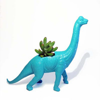 Up-cycled Tropical Blue Apatosaurus Dinosaur Planter