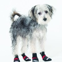 Fashion Pet Lookin Good Extreme All Weather Boots for Dogs, Medium, Red