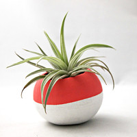 Mini Colorblock Planter in Orange