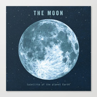 Blue Moon Stretched Canvas by Terry Fan