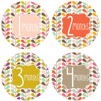Little Bundle of Joy Monthly Stickers