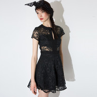 Black Collared Short Sleeve Floral Mesh Mini Dress