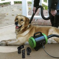 Pet Styling System