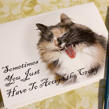 Catty Cards Greeting Cards. Karma the Cat Is Going Crazy - funny calico kitty. Blank holiday card to say something special
