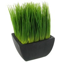 Green Grass in Charcoal Container | Shop Hobby Lobby