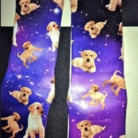 SWEET LORD O'MIGHTY! LABS IN SPACE SOCKS