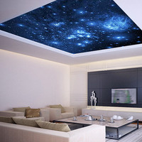 Ceiling STICKER MURAL air moon blue clouds decole poster 96'x96'