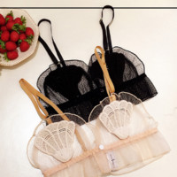 Fashion Underwear bra shell buckle without rims before embroidery transparent gauze bra lace