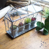 Glass & Wire Terrarium Short
