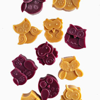 Scented Wax Melts-WHIMSICAL OWLS