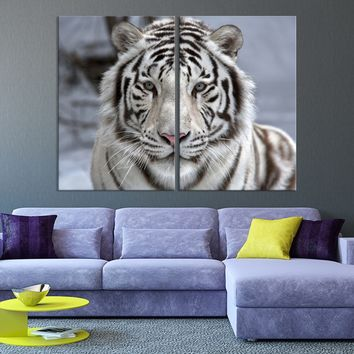 Large Wall Art Animal Canvas Print - Scowing Bengal Tiger - MyGreatCanvas.com |  Extra Large Wall Art - Wall Art Print - Large World Map Canvas Print Gallery